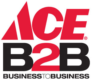 ace b2b Business To Business